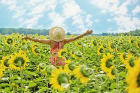 Relajación , alegría de vivir, liberación estrés laboral