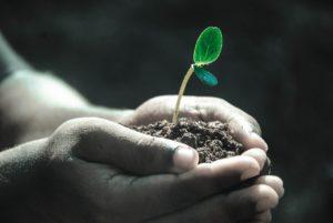 Invertir en mí, Seguir creciendo, renovarse